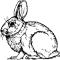 Gravatar autora rabbit314